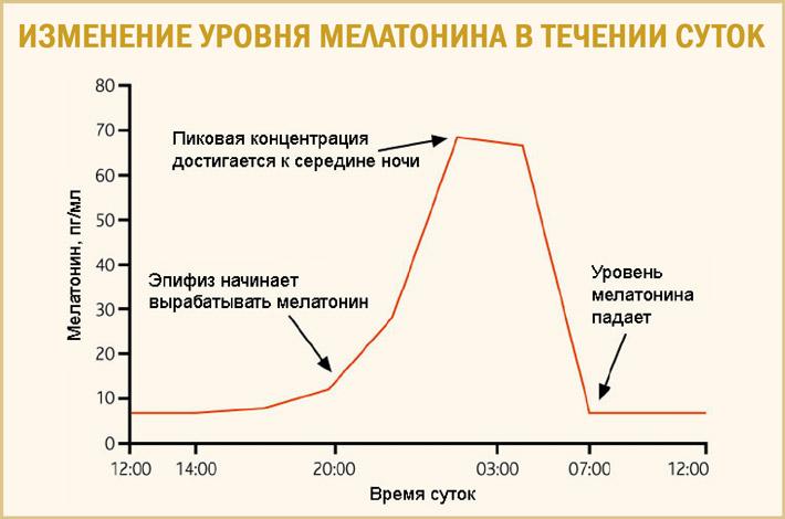 Изменение мелатонина в течении дня