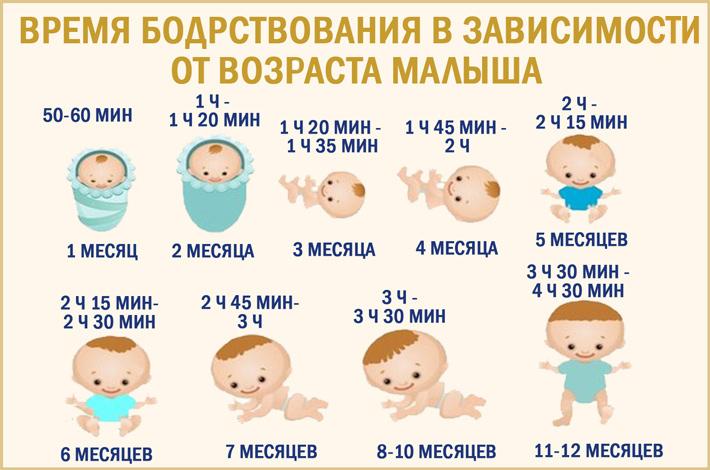 Время бодрствования ребенка по месяцам