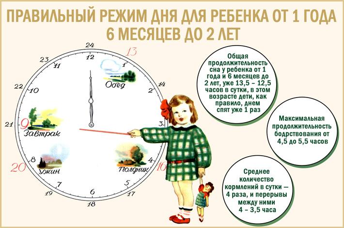 Режим дня ребенка от 1 года 6 месяцев до 2 лет