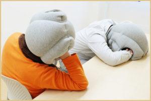 Подушка-страус: для офисных работников
