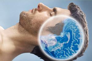 Характер активности мозговых структур в процессе сна