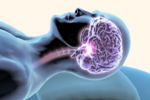 Характерные черты медленной фазы сна человека